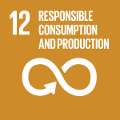 SDG 12 - Responsible Consumption and Production